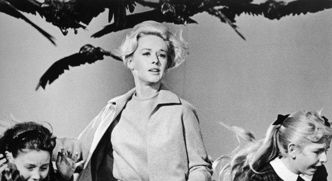Especialistas dizem que não precisamos temer aves assassinas, como no clássico filme de terror de Alfred Hitchcock, 'Pássaros' (1963)