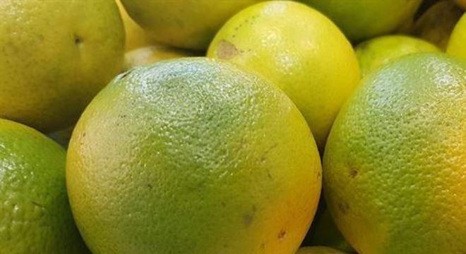 Cerca de 180 produtores de laranja no Brasil ingressaram uma ação internacional contra companhias alegando cartel para compra da fruta. Expectativa é que a indenização chegue a US$ 3 bilhões (R$ 12 bilhões)