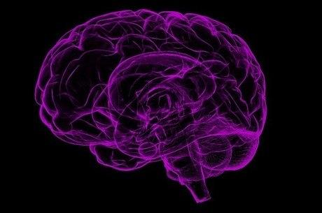Cérebro pode processar informações de forma rápida ou lenta