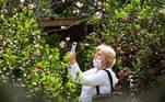 A época de florada de cerejeiras colore o Parque do Carmo, na zona leste de São Paulo