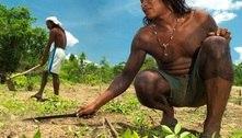 Edital elege 14 comunidades para projetos de preservação do Cerrado