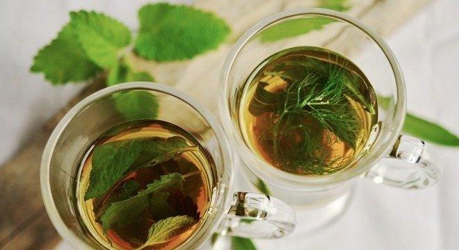 Chá de boldo e outros tratamentos fitoterápicos não são eficazes para a covid-19
