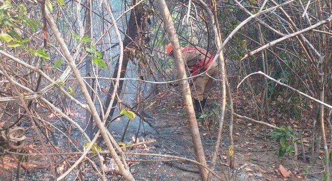 Chapada dos Veadeiros é devastada por fogo
