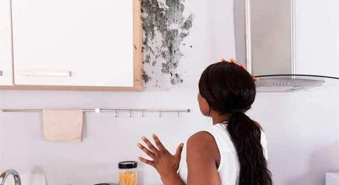 Cheiro de mofo - dicas e receitas caseiras para eliminar esse problema