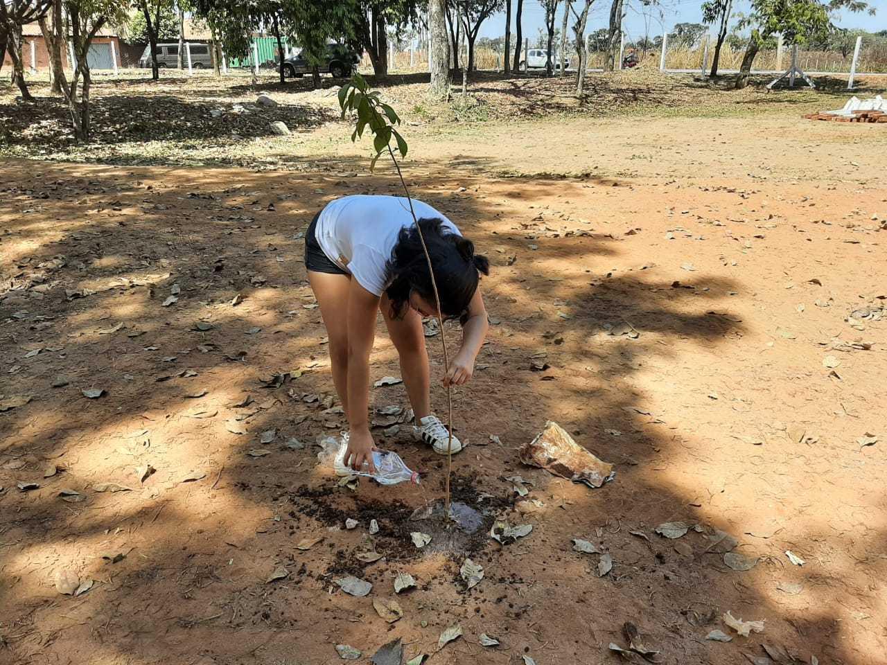 Chris Souza planta uma muda da árvore Oiti no Parque Taquaral, noroeste de Goiânia