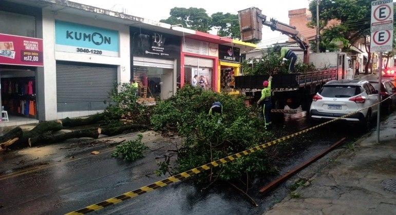 Temporal deixou rastro de destruição na tarde desta quarta em BH e região metropolitana