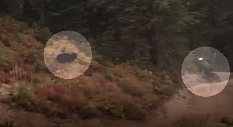 Cliclista em alta velocidade foi perseguido por urso em colina dos EUA
