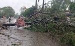 Árvore caída no distrito de Bhadrak, estado de Odisha, na Índia, por conta dos primeiros ventos do superciclone Amphan