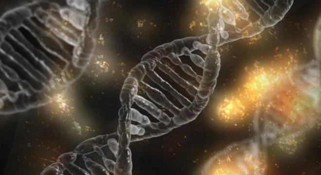 """""""Xenobots"""" têm alta regeneração e são biodegradáveis"""