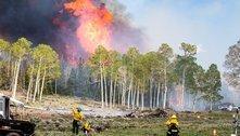 Fumaça de incêndios pode ser nova rota de disseminação de doenças