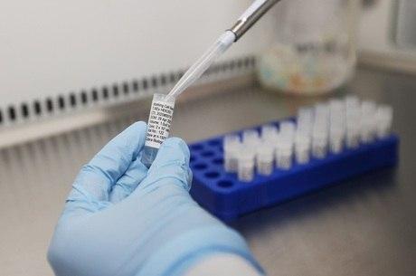Vacina dá resulta em macacos pequenos