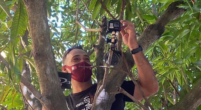 Subir na árvore foi a melhor opção para conseguir uma boa imagem