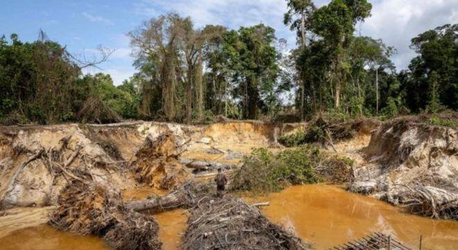 Garimpo ilegal deixa rastro de desmatamento e contaminação por mercúrio