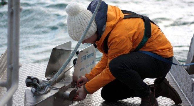 'Vimos por meio desses registros que tivemos alguns casos históricos de plástico emaranhados', conta Ostle