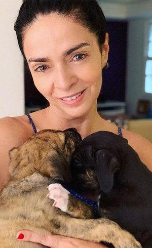 Claudia Ohana é acusada de abandonar cachorros adotados