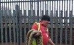 A píton birmanesa é considerada uma espécie invasora e perigosa nos Estados Unidos, onde coloca em risco animais locais e não possui predadores. No Reino Unido, biólogos estudam com cuidado a situaçãoLEIA ISSO:Gigante e assassina! Cobra mutante põe em perigo animais de parque