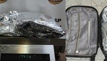 PF prende passageiro dos EUA com cocaína na mala em Guarulhos (SP)