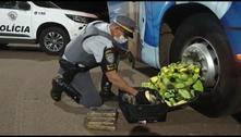 Mulher é presa em rodovia de SP transportando 13 kg de cocaína