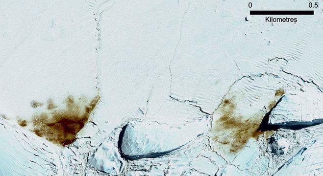 A colônia de Dawson-Lambton cresceu, segundo análise de imagens de satélite de 2018