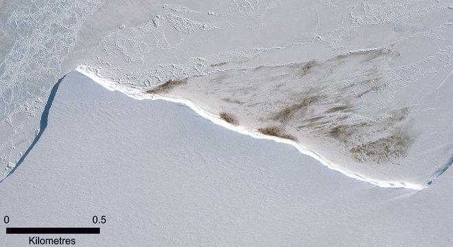 Nessa imagem de satélite de 2015, é possível ver a mancha de guano da colônia Halley Bay