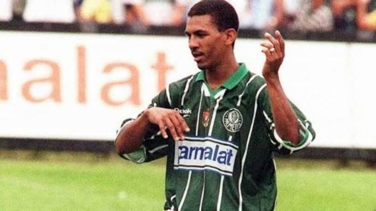 Com o Flamengo, Djalminha foi campeão brasileiro em 1992. Já com o Palmeiras, venceu o Campeonato Paulista de 1996.