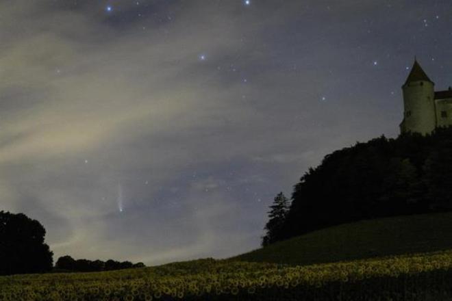 cometa neowise suica