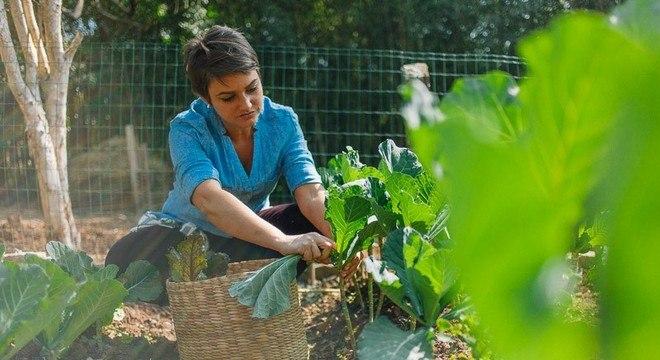 Chef e dona de restaurante sustentável utiliza ingredientes 100% naturais