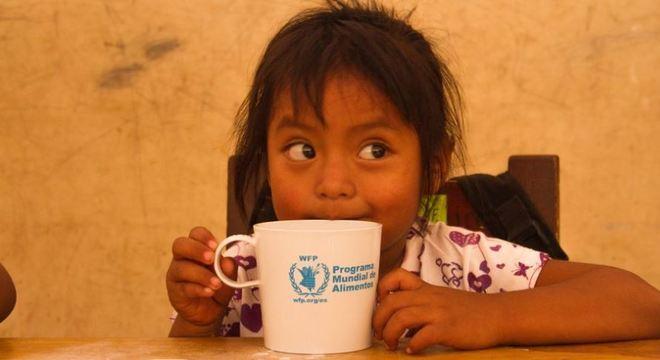 ONG ajuda a distribuir alimento para todo o mundo