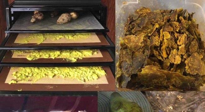 Como Fazer Azeite de Abacate1