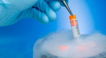 Procura por congelamento de óvulos aumenta a cada ano
