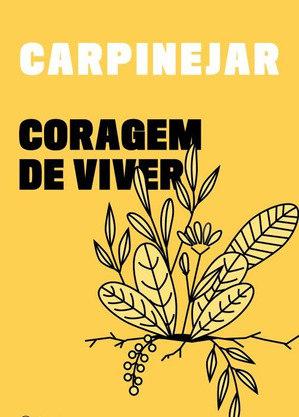 livroSão 57 textos, acompanhados por ilustrações em aquarela de Ana Carolina Cardia