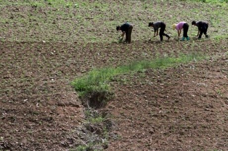 País corre risco de uma 'crise de segurança alimentar'