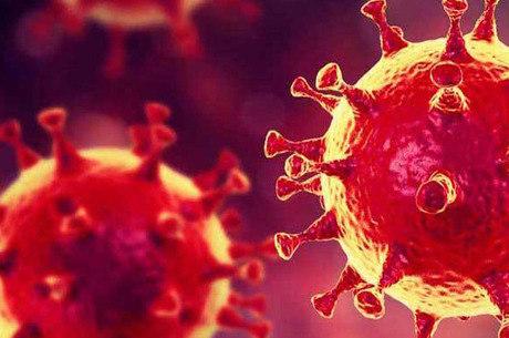 Testes rápidos para coronavírus são aprovados