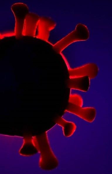 Coronavírus – Saiba tudo sobre ele e a doença COVID-19 – R7