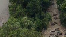 Mulher desaparece durante temporal na zona norte de SP