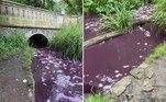 As águas de um córrego que corta um dos maiores parquesdeGlasgow, na Escócia, misteriosamente adquiriram a tonalidade roxa