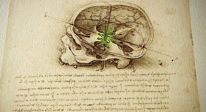 Da Vinci foi o primeiro artista a realizar uma autópsia humana completa, por isso seu conhecimento do funcionamento do corpo era muito superior ao de qualquer de seus contemporâneos