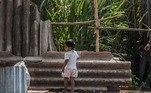 O IDH (Índice de Desenvolvimento Humano) do Brasil melhorouna passagem de 2018 para 2019, mas o país perdeu cinco colocações noranking mundial e agora aparece na 84ª posição, segundo lista divulgada pela ONU(Organização das Nações Unidas)