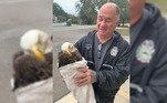 Percebendo que o animal não podia voar ou comer, a equipe contatou o Santuário do Ninho da Coruja— uma organização de resgate e reabilitação de vida selvagem