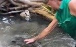 Apesar da facilidade em lidar com o situação, Matt lembrou o quão perigoso esse animal pode serVeja também:Gigantesca! Essa é a maior píton birmanesa já capturada na Flórida