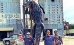 Caçadores do Arkansas (EUA) capturaram um crocodilo dos maiores, em uma longa batalha aquática que durou cerca de duas horas