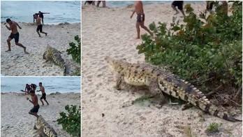 Mar, areia e terror! Crocodilo invade praia e força fuga de turistas (Reprodução/Tatarstan24)