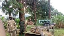 A história de Osama, o crocodilo que matou 83 pessoas até ser pego