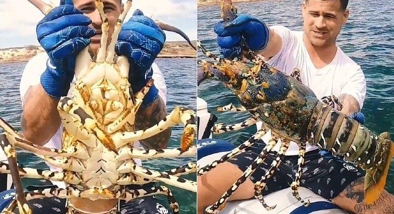 Crustáceo monstrão fisgado na Austrália dividiu internautas: lagostim ou lagosta?