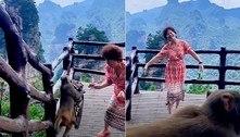 O mundo gira! Macaco pilantra foge com bolsa de chinesa dançante