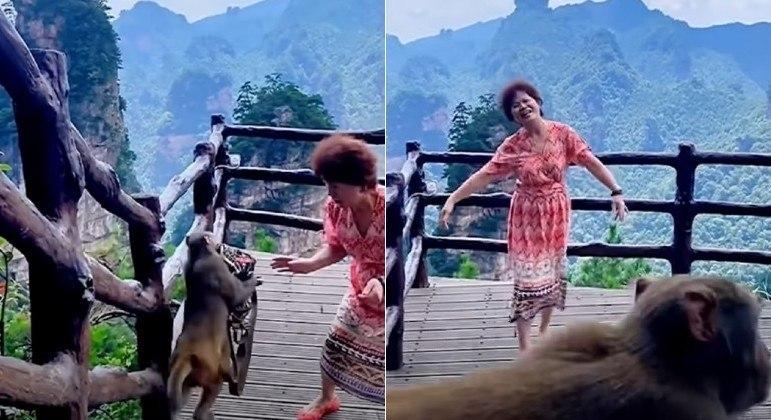 Macaco aproveitou dança de chinesa para roubar a bolsa dela