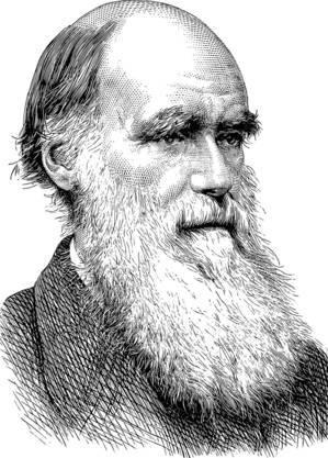 Darwin: o pai da teoria