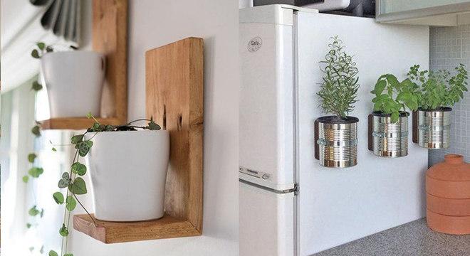 Decoração com plantas para a cozinha: ideias para se inspirar