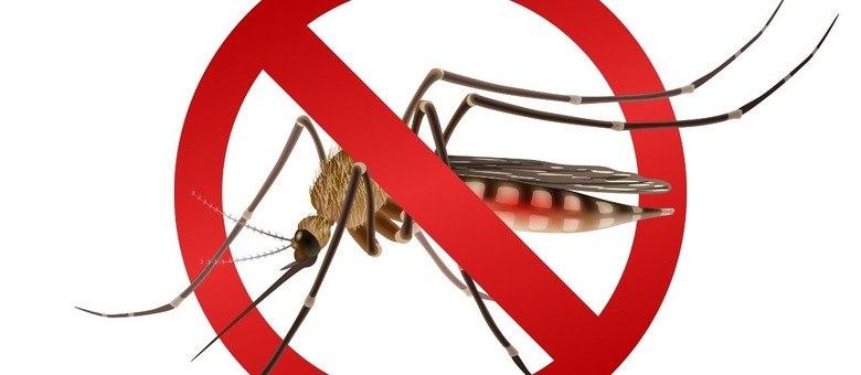 Diga não a dengue!