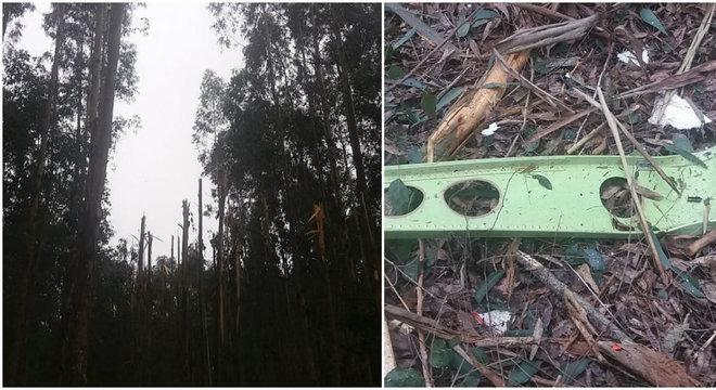 Árvores quebraram com a queda do avião, pedaços da aeronave foram encontrados na mata